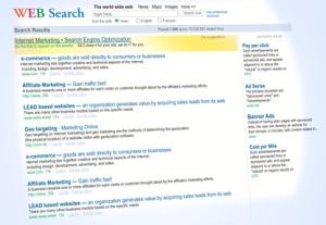 Internet Web Search